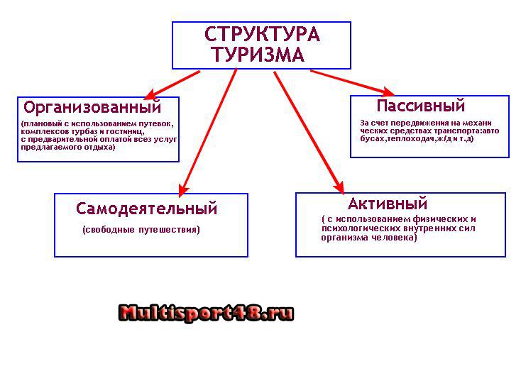 Виды туризма структура туризма